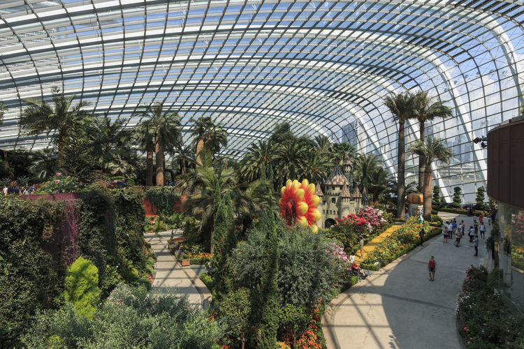 Singapore, Singapore - October 16, 2018: Inside the Flower Dome at the Gardens by the Bay in Singapore. Singapore Cloud Forest Dome Flower Dome Gardens By The Bay Marina Bay Sands ASIA Waterfall Greenhouse Smart City Green Environment Conservation Exotic Flora Fern Plant Grass SuperTree Supertree Grove