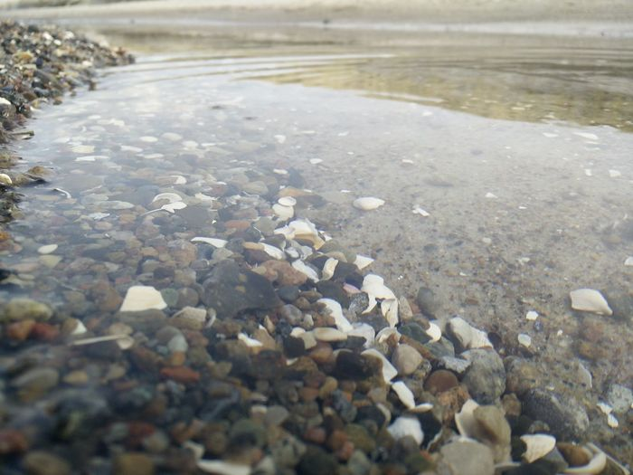 Surface level of pebbles in water