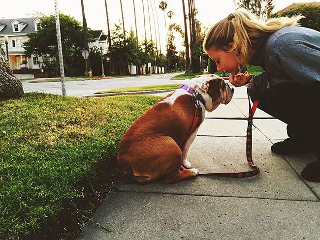 Love Puppylove 😘😍🐶 Dog