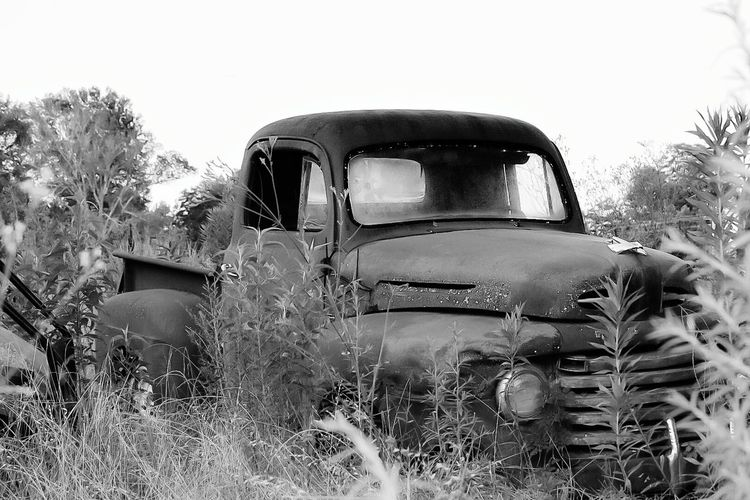 Rusty Rusty Metal Rusty Autos Antique Collection Antique Truck Abandoned Truck EyeEm Best Shots Outdoors Outdoor Photography Mein Automoment