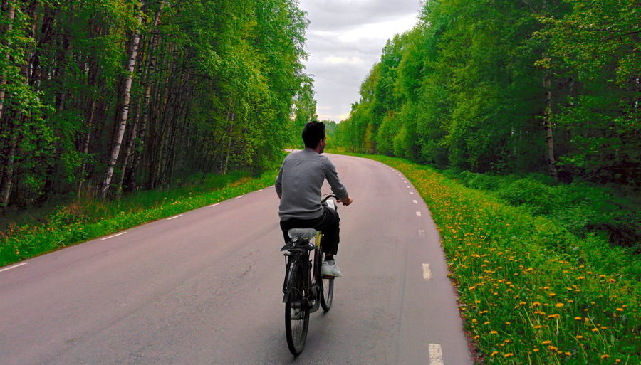 Rear view of person riding bicycle on road