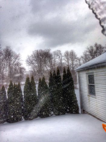 I probably shot this 50 times trying to catch the wind blowing the snow off the roof.... This was the only one that captured it... Nature_collection How's The Weather Today? IPhoneography IPhone Photography Snow ❄ Cold Days EyeEm Nature Lover Wind February Taking Photos
