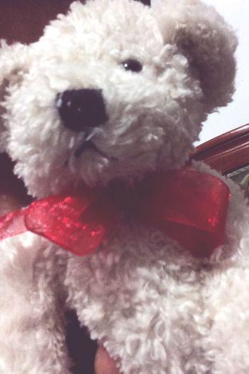 Bear Toys Cute