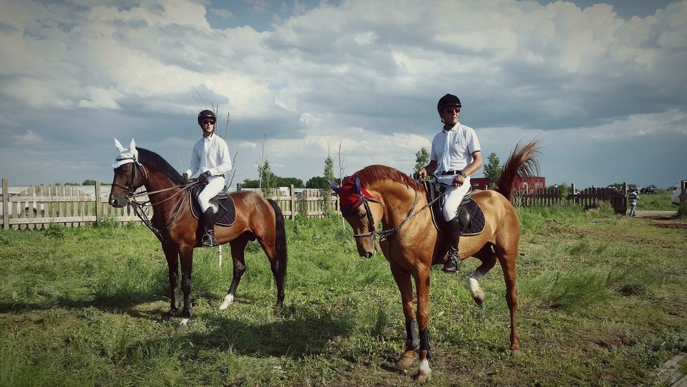 Horses Horse Konkur Astana Kazakhstan The Moment - 2015 EyeEm Awards The Street Photographer - 2015 EyeEm Awards