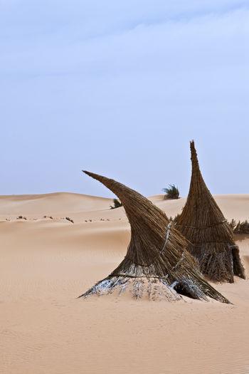 Driftwood on sand at beach against clear sky