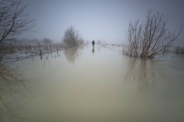 Slight Blur Long Exposure Photography In Motion Blurred Motion Lonely Lone Person Foggy Morning Foggy Landscape Misty Morning Irthlingborough Waterscape Reflections Northamptonshire Here Belongs To Me Beautiful Nature Floodplain Wading Flooded Flooded Path Walk By The Lakes The Great Outdoors With Adobe The Great Outdoors - 2016 EyeEm Awards