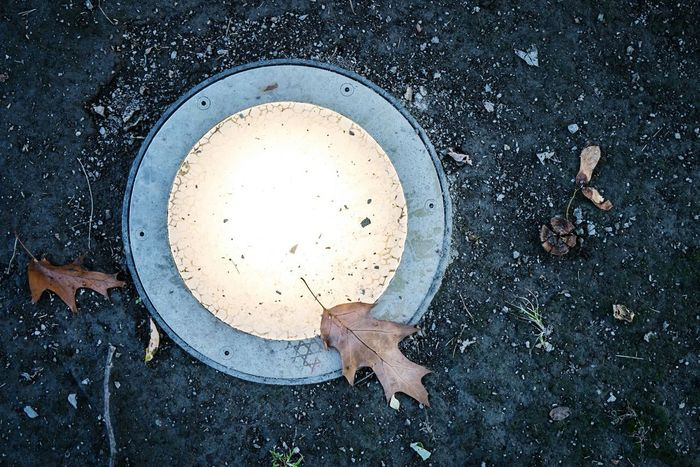 In ground light with leaf on top Light Lamp Leaf Color In Ground In Ground Light Leaf Brown Leaf  Warm Light Soil Dirt Rocks Nature Technology Landscape Lighting Circle Circular Lighting Circular Light Food And Drink Food No People Indoors  Freshness Close-up Day