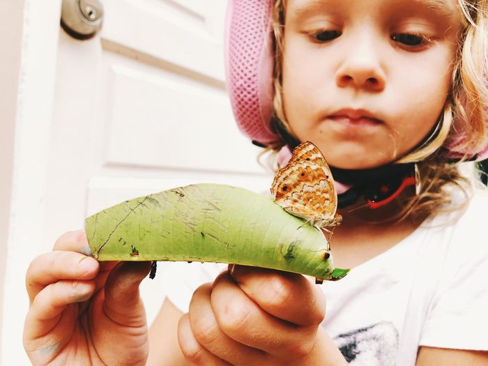 Close-Up Of Butterfly On Leaf Being Held By Girl