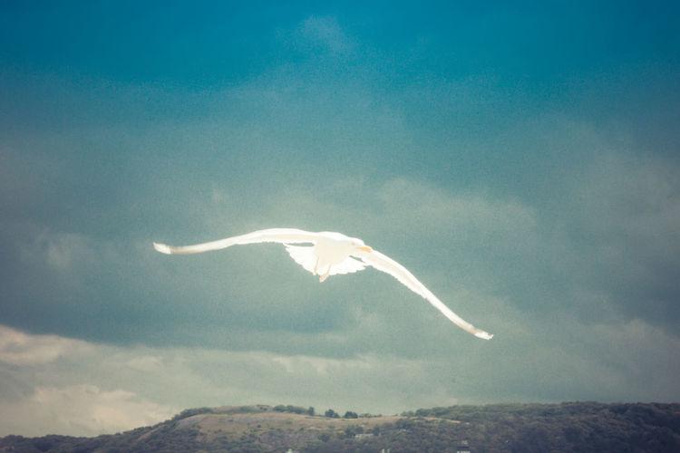 Llandudno Wales
