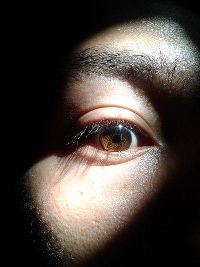 Eyes Eye Eyes Are Soul Reflection Eyes Watching You EyesAreTheWindowToTheSoul Eyes<3 Eyeselfie Eyesbrown Eyeslipsface Eyes Wide Open Honeyeyes Glum Shadowy Shadow Shadows & Lights Shadow And Light Shadows & Light Shadow Photography Shadows Shadows And Sunlight Shadows_collection Shadows Of The World Dismal EyeEm Selects