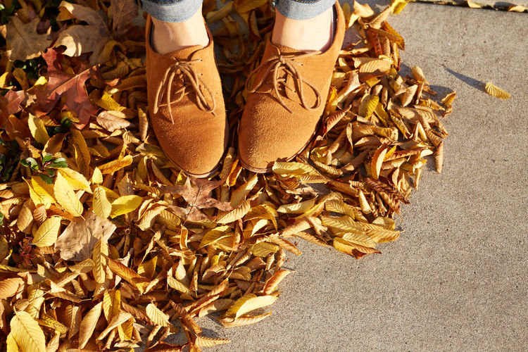 Adult Autumn Change Close-up Day Food Freshness High Angle View Human Body Part Human Leg Leaf Low Section Men One Man Only One Person Outdoors People Shoe Standing