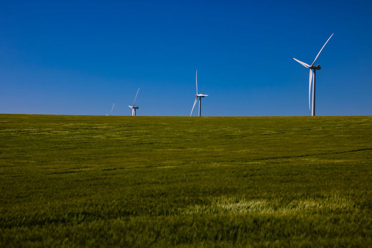 Alternative Energy Beauty In Nature Blue Clear Sky Day Environmental Conservation Field Fuel And Power Generation Grass Industrial Windmill Landscape Nature No People Outdoors Renewable Energy Rural Scene Scenics Sky Tranquility Wind Power Wind Turbine Windmill