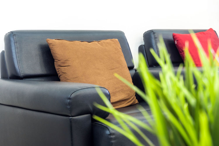 Sofa in the living room where no one sat Indoors  Still Life Daybed Pillow Grass Ornamental Selective Focus Ferniture Leather Sofa Relax Corner Relax Chair Home Interior Decoration
