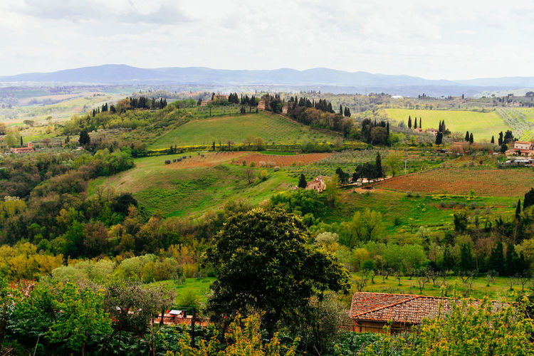 Agriculture Architecture Beauty In Nature Built Structure Day Field Green Color Italy Landscape Mountain Nature No People Outdoors Rural Scene San Gimignano Scenics Sky Toscana Tranquil Scene Tranquility Tree Tuscan Tuscany