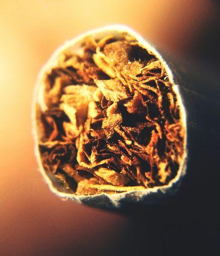 Cigarette  Coffin Nails Coffinnails Cigar Cigarrette Cigars