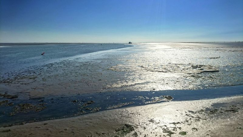 Clear Blue Sky Waiting For The Ferry  Beautiful Nature Waddenzee Wadden Island Schiermonnikoog Light And Shadow