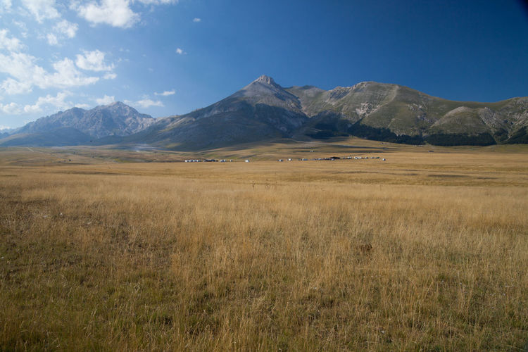 Idyllic shot of grassy field and mountains against blue sky