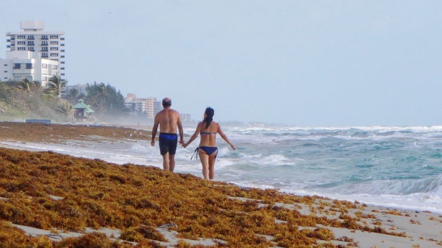 Rear view of couple walking at beach against clear sky