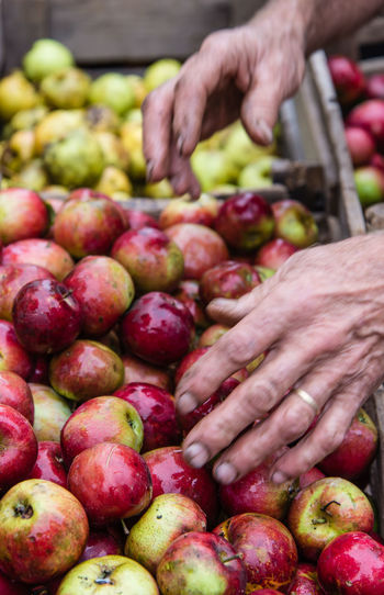 Cropped mage of hand touching apples at market