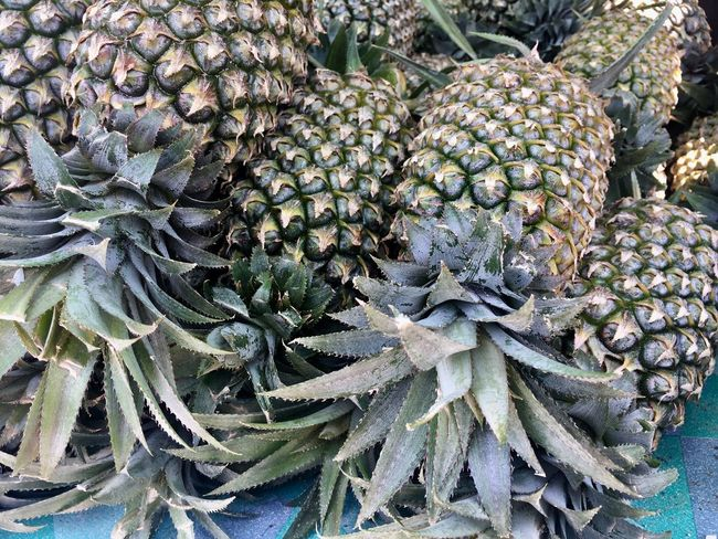 Ananas Thailand Thailandtravel Pineapple🍍 Day Full Frame Plant Backgrounds Nature Food And Drink Beauty In Nature Market Green Color
