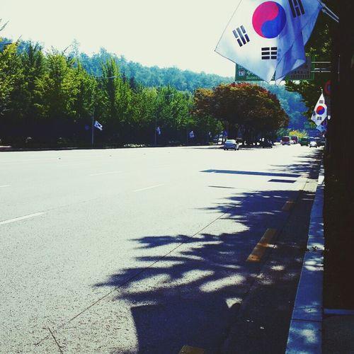 태극기 Korea Walking Around Fall