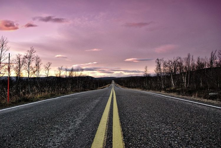 Asphalt Bare Tree Beauty In Nature Day Diminishing Perspective Landscape Nature No People Outdoors Road Road In Swedei Road Marking Scenics Sky The Way Forward Transportation Tree Perspectives On Nature