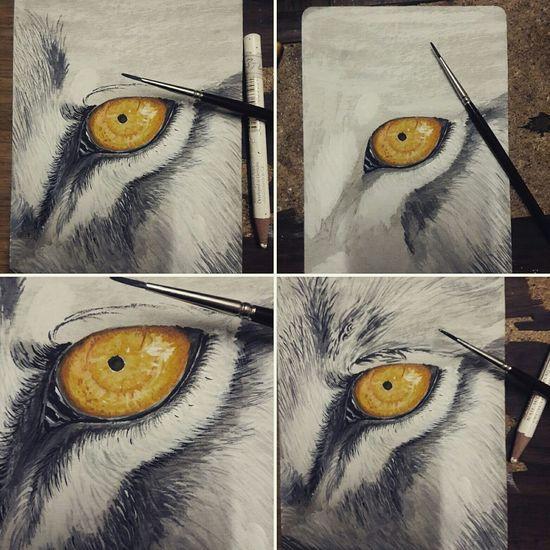 Wolf Painting Paint Resim Boya Izmir Kucuksanat Firca Illustration Deneme First Eyeem Photo