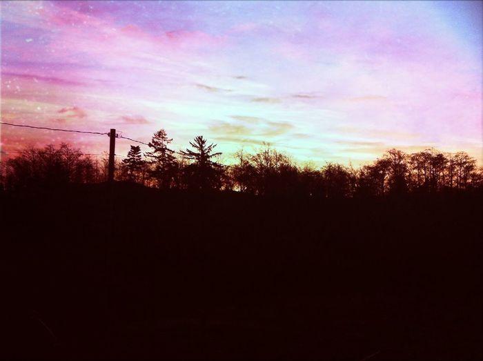 Makin Skyes Purple