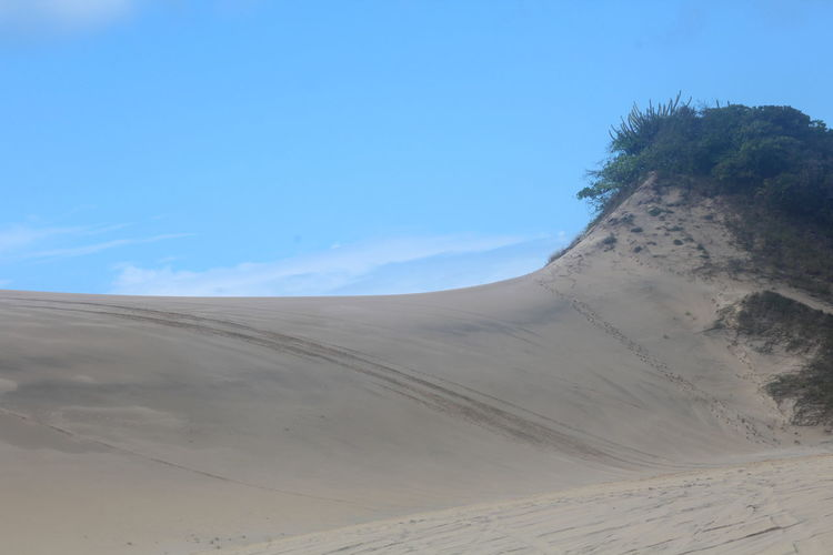 Dunas Arid Climate Beauty In Nature Blue Clear Sky Day Desert Landscape Nature No People Outdoors Sand Sand Dune Scenics Sky Tranquil Scene Tranquility