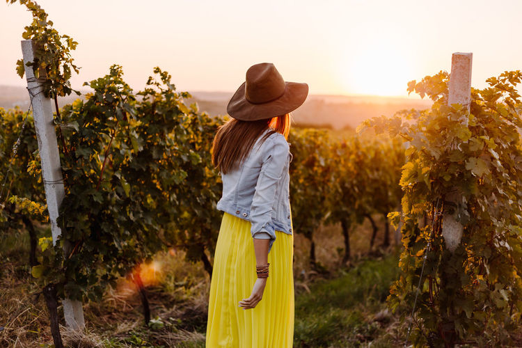 Rear view of woman walking at vineyard against clear sky during sunset