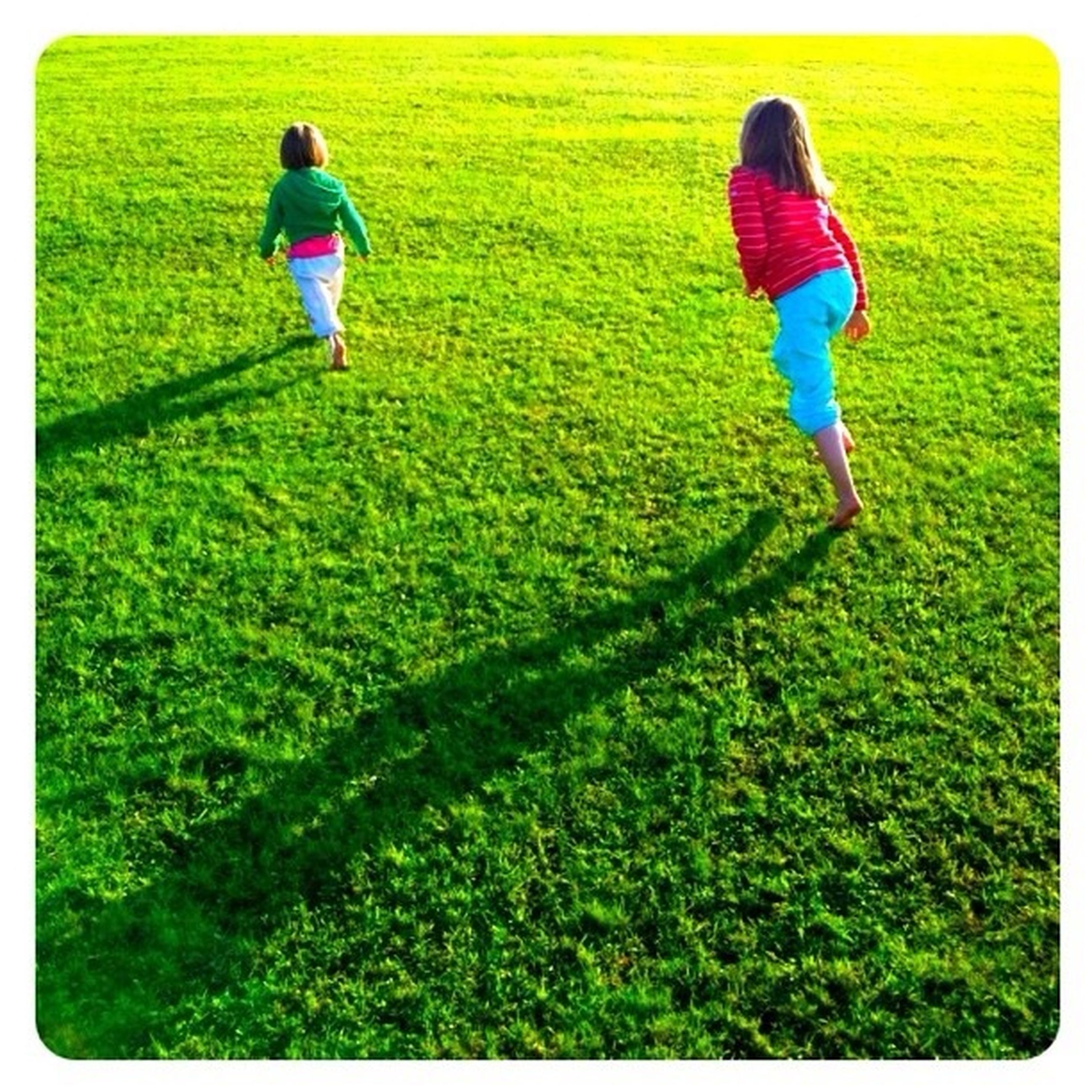 transfer print, grass, lifestyles, leisure activity, full length, childhood, casual clothing, field, auto post production filter, boys, elementary age, girls, green color, grassy, walking, rear view, landscape, men