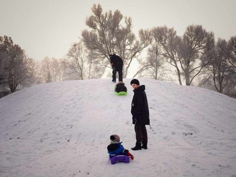 Sledging Winter Snow Father Warm Clothing Cold Temperature Family Child Childhood Outdoors Bonding