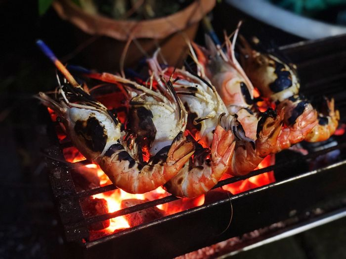 Seafood Food Food And Drink Burning Heat - Temperature Fire Fire - Natural Phenomenon High Angle View Close-up Grilled Barbecue Grill Animal Healthy Eating Barbecue Vertebrate Freshness Wellbeing Flame No People Fish
