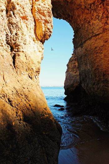 Lagos Portugal Sealife Beauty In Nature Cliff Day Horizon Over Water Natural Arch Nature No People Outdoors Physical Geography Rock - Object Rock Formation Scenics Sea Sky Tranquility Water
