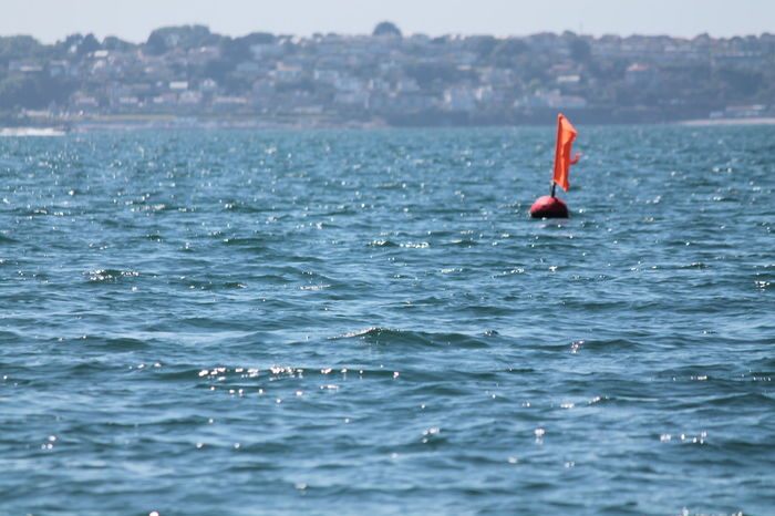 Aquatic Sport Sport Sea Leisure Activity Outdoor Pursuit Adventure Red Buoys Red Buoy Red