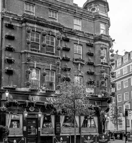 The Mason's Arms, Devonshire Street, Marylebone, London Architecture Architecture London FUJIFILM X-T2 Monochrome Photography FUJIFILMXT2 Black And White Monochrome Marylebone Pubs London Pub