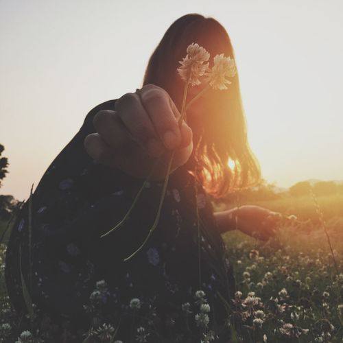 Close-up of young woman picking flowers during sunset