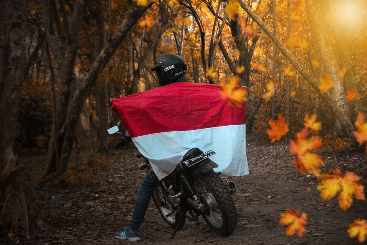 Rider On The Jungle Okt 2017 INDONESIA Motorcycle Portraits Autumn Brotherhood Clothing Conceptual Forest Land Lifestyles Motorcycles Nature One Person Outdoors Plant Portrait Portrait Photography Real People Rear View Ride Riding Transportation Tree