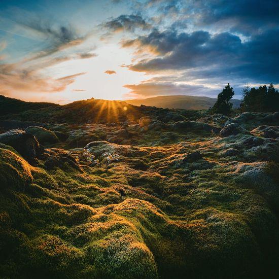 Landscapephotogr