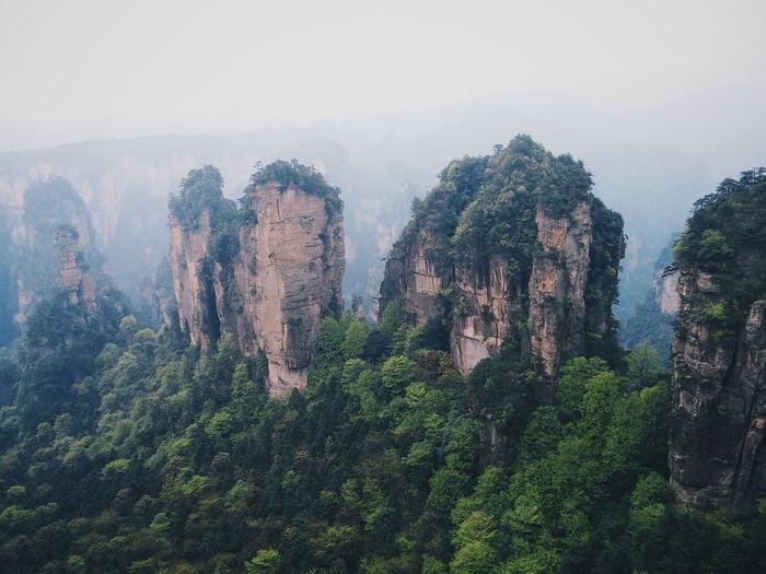The amazing zhangjiajie karst peaks Karst Karst Mountain Karst Formations Zhangjiajie Yuanjiajie Travel Landscape Beautiful Amazing