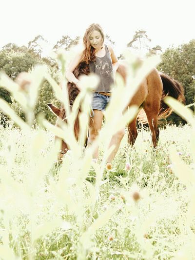 Riding Girl Riding Photoshoot Islander Horseriding Girl Cowgirl Indian Summer Horseshooting Icelandic Horse Ridingwoman Portrait Of A Woman Shooting Horse Photography  Young Adult Horse Riding
