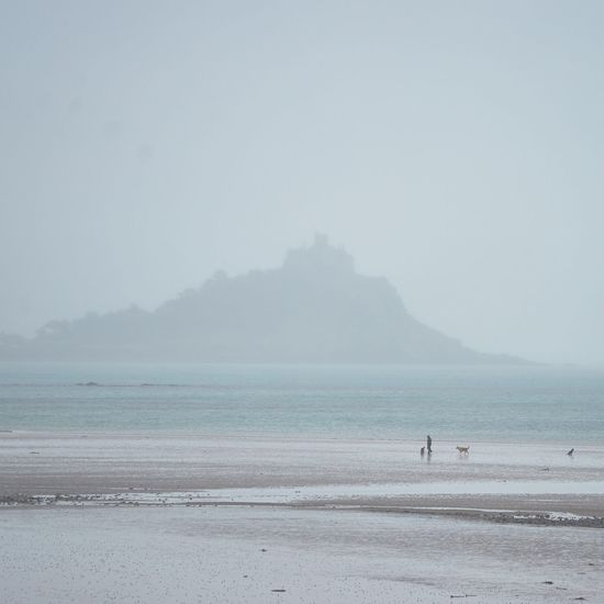 Beach British Dogs Fog Foggy Day Island Ocean Pastel Power Photography Sea Sea And Sky Silhouette
