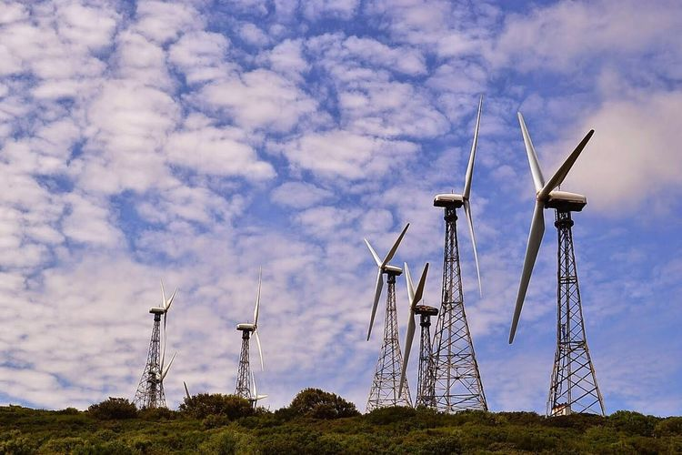Windmill Wind Power Fuel And Power Generation Wind Turbine Alternative Energy Environmental Conservation Rural Scene Cloud - Sky Sky Renewable Energy No People Technology Day Outdoors Nature Architecture