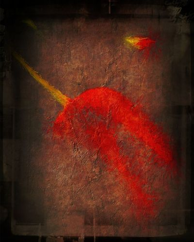 "Tulipes Rouge. Fleur & Plume AMPt - ""Still Life"" (Nature Morte)"