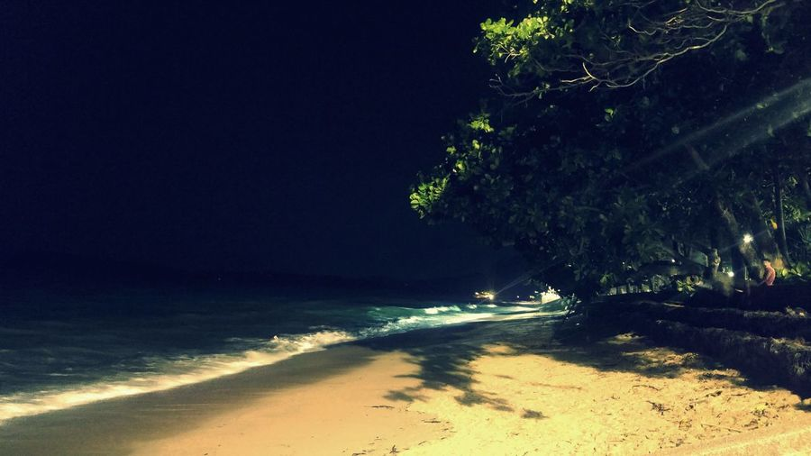 Beach Sea Sand Tree Night Nautical Vessel Outdoors Nature Water Beauty In Nature Scenics No People Wave Sky