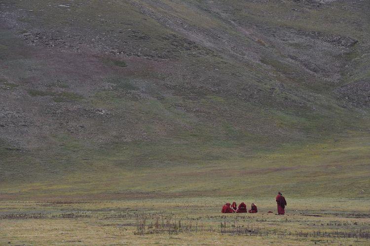 Tourists on a field