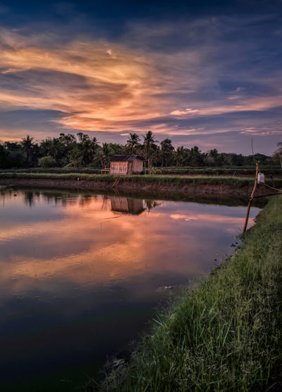Reflection Sunset Landscape Water Tree Symmetry Cloud - Sky Nature Outdoors Tranquility No People Scenics Lake Sky Natural Parkland Beauty Dawn Day Beauty In Nature Rice Paddy EyeEmNewHere Perspectives On Nature Tranquility Sulawesi Selatan Outdors No People Be. Ready.