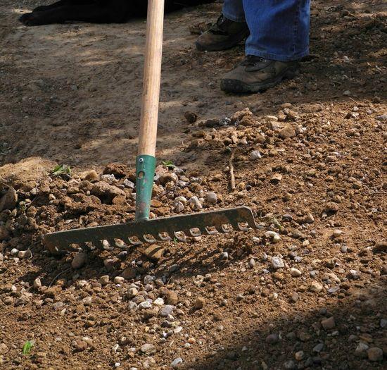 Low section of man working field through rake