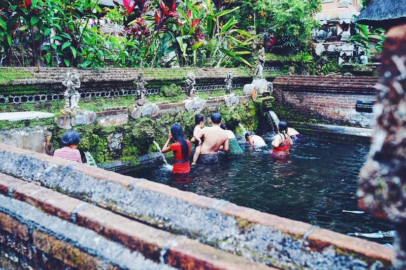 Baliphotography Water Travel Real People Colors Travel Photography Bali, Indonesia Bali Plant Day Group Of People Nature Outdoors Real People High Angle View People Mammal
