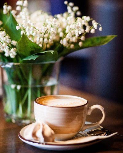 Две любви в одном кадре.ландыши кофе утродобрымбывает кофевпрофиль фотонастроение яжфотограф точтоялюблю Coffee Lilies of the valley Goodmorning Photomood Photo Hobby Ilike it